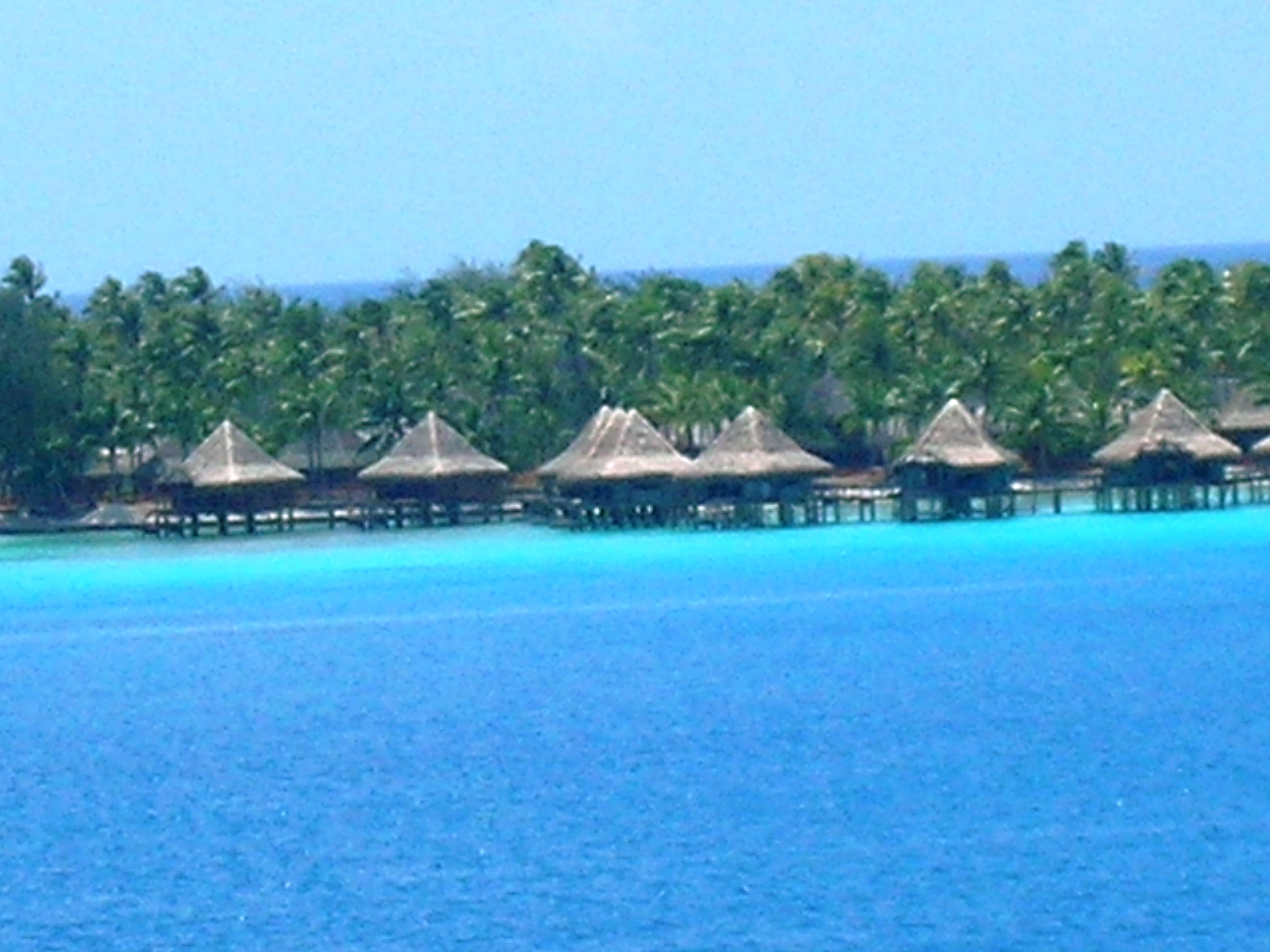 Rangiroa French Polynesia  city pictures gallery : March 25, 2011: Rangiroa, Society Islands, French Polynesia ...